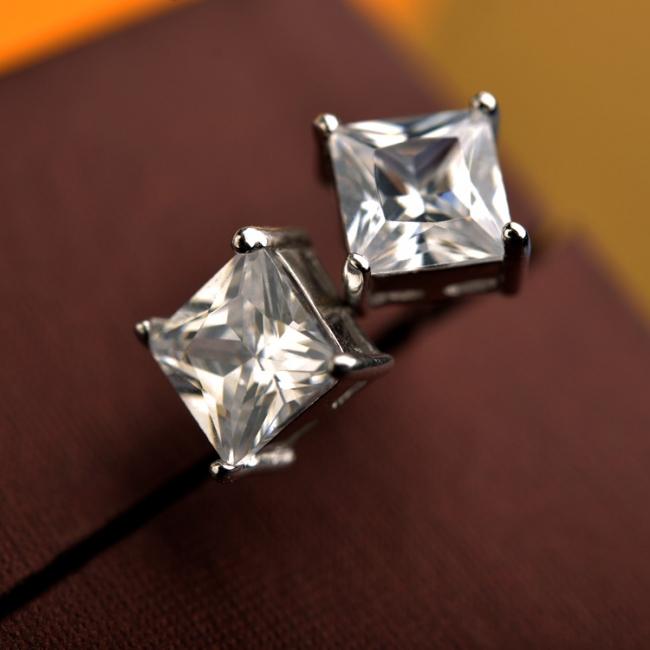 fashion silver earring 710232