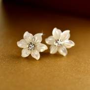 fashion silver earring 010061