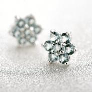 fashion silver earring 710868