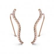 Fashion earring  125668